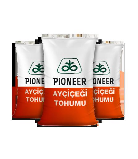 Ayçiçek - Pioneer 104 (İlaçsız)
