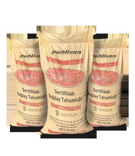 Pehlivan Sertifikalı Buğday Tohumu